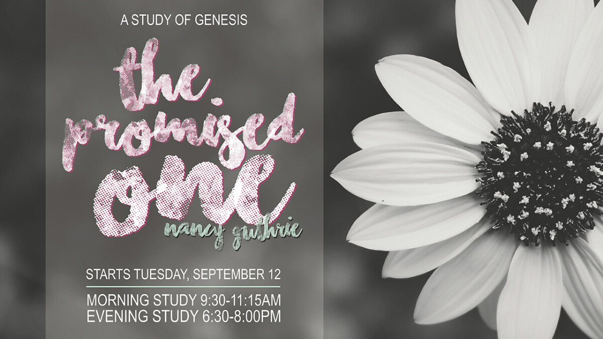 WOMEN'S FALL BIBLE STUDIES